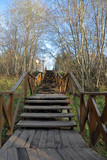 Long narrow outdoor staircase in a deserted autumn park