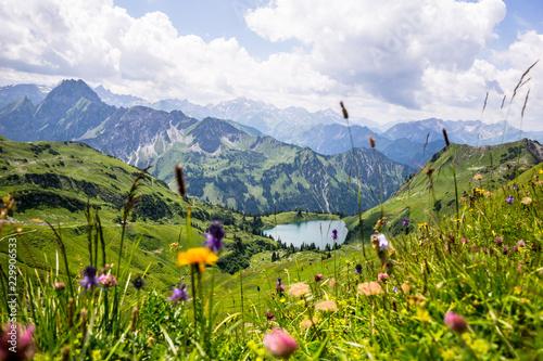 Zdjęcia na płótnie, fototapety na wymiar, obrazy na ścianę : Seealpsee in den Allgäuer Bergen - Bergsee im Allgäu