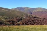 Autumn in mountains - 229918584