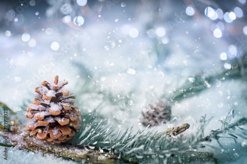 Leinwandbild Motiv Magic Winter Forest Background