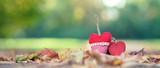 liebevolle Herbstdekoration - 229940984