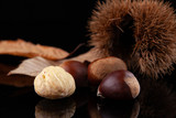 Chestnuts and autumn leaves on black background - 229946152