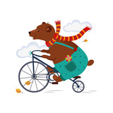 Bear Riding a Bicycle in Scarf iAutumn. Vector Illustration - 229956988
