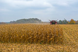 harvesting corn in a field with a modern combine on a cloudy day, followed by loading onto a truck - 229968990