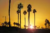 Beach sunrise with palm trees - 230021940