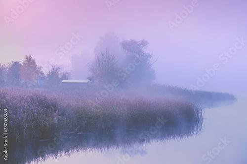 Leinwandbild Motiv Beautiful rural morning landscape. Lakeshore in the magical misty morning. Beautiful fairytale nature