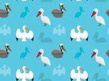 Bird Pelican Wallpaper