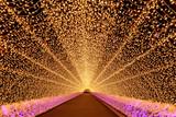 Nabana no Sato garden winter illumination at night, Nagoya - 230044300