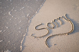 Sorry message handwritten in calligraphy lettering on smooth sand beach - 230054513
