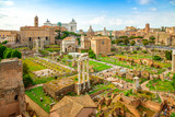 Roman forum ancient ruins in rome, Italy. Rome architecture and landmark. Rome sityscape.
