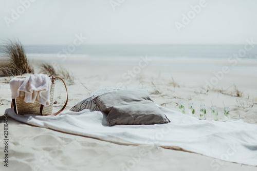 Picnic et boissons fraîches sur la plage  - 230104554