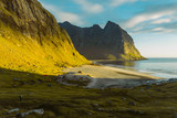 Beautiful view of Lofoten Kvalvika Beach an amazing sunny summer day. Dry grass and heather bushes. Hikers tent, Norway 2018 - 230116372