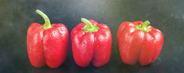 Red sweet pepper on a dark background. Fresh whole red bell pepper with droplets of water. © Serenkonata
