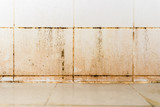 Dirty on ceramic wall in bathroom - 230184589
