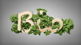 Wooden logo bio with leaves around 3d rendering - 230206794
