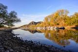 Der Rhein bei Niedrigwasser - 230217795