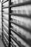 monochrome closeup of a shelf for screws or other equipment - 230225376
