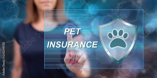 Woman touching a pet insurance concept - 230244330