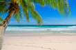 Leinwanddruck Bild - Vacation sandy beach with palm and turquoise sea.  Summer vacation and tropical beach concept.