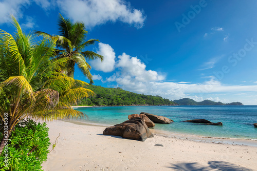 Exotic sandy beach with palm and a sailing boat in the turquoise sea on Seychelles paradise island. Summer vacation and travel concept.
