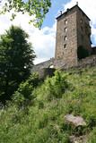 Vue d'en bas du château de Reinhardstein - 230255301