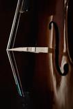 Cello - 230262502