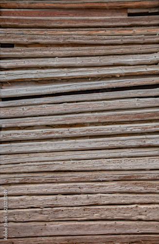 Holz - 230280149