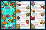 Exotic fruits market sketch menu price