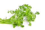 Bunch of fresh coriander leaves over white background - 230347539