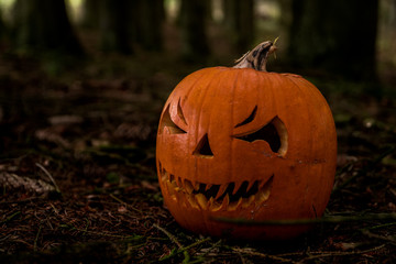 scary halloween pumpkin in the forest