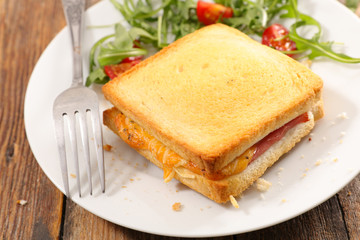 toasted bread with ham and cheese