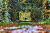 Män på en skogsväg med nyfallen snö - 230452104