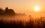 Mystischer Sonnenaufgang - Nebel im September - 230473386