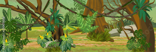 Thick non-walkable jungle. A tropical forest. Rainforests of Amazonia. Tree, epiphytes, ferns, grass, creepers, banana trees, flowers and monsteras. Realistic Vector Landscape