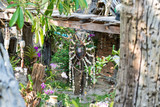 The garden of the Hippie Bar ornate with flowers, mobiles, sculptures and wind chimes.  - 230481925