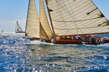 Sailing yacht regatta. Yachting. Sailing - 230501778
