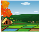 large paddy field vector design - 230537102