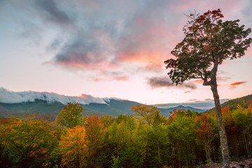 Wooded mountains and pink clouds on the peaks at sunset. White Mountain National Park. USA. New Hamshire.