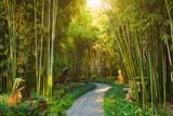 Fototapeta Bambus - Wangjiang Pavilion in Wangjianglou park. Chengdu, Sichuan, China © Dmitry Rukhlenko