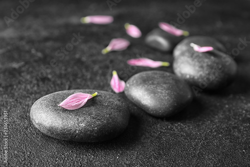 Leinwanddruck Bild Spa stones and flower petals on dark background
