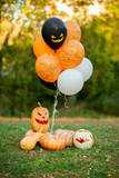 Halloween decorated pumpkins for a party outside in the park with orange and black balloons - 230654947