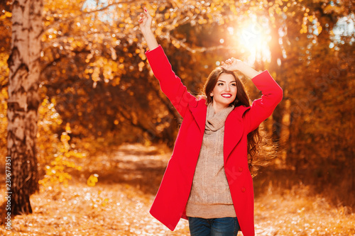 forest in golden autumn
