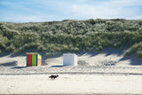 Strandhäuser vor den Dünen - 230682745