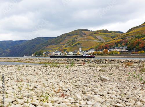 Leinwanddruck Bild Niedrigwasser am Rhein, Mittelrheintal bei Assmannshausen, das stark ausgetrocknete Flussbett mit Weinbergen im Hintergrund