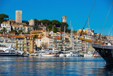 Old Port of Cannes - 230705574