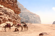Leinwanddruck Bild - Camels in Wadi Rum desert, Jordan