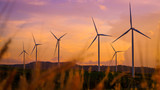 Wind turbines produce electricity and sunlight during sunset. - 230777539