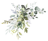 watercolor floral arrangements with leaves, herbs.  herbal illustration. Botanic composition for wedding, greeting card. - 230778378