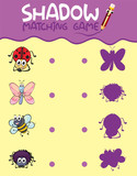 Insect shadow matching game template - 230794127