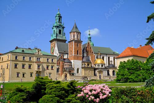 obraz PCV Wawel Castle in Krakow